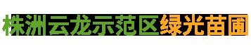 株洲云龙示范区绿光苗圃|造型罗汉松批发_株洲造型五针松种植